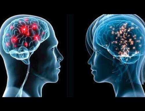 Lesson plan: Men's brains vs. women's brains.